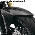 Speed Triple_ Carbon Front Mudguard
